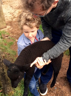 Grandson Jake with our sock lamb